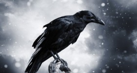 'Raven's Call'