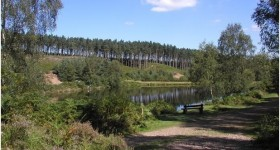 Cannock Chase black eyed child encounter